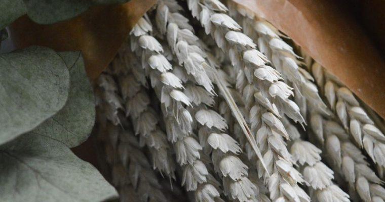 DIY – Puuverstaan talvikranssi, osa 1
