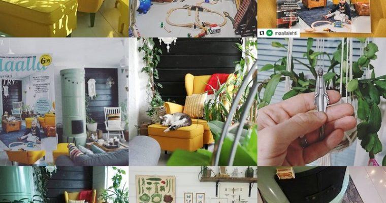 Vuosi 2019 Villa Kotirannassa valokuvin