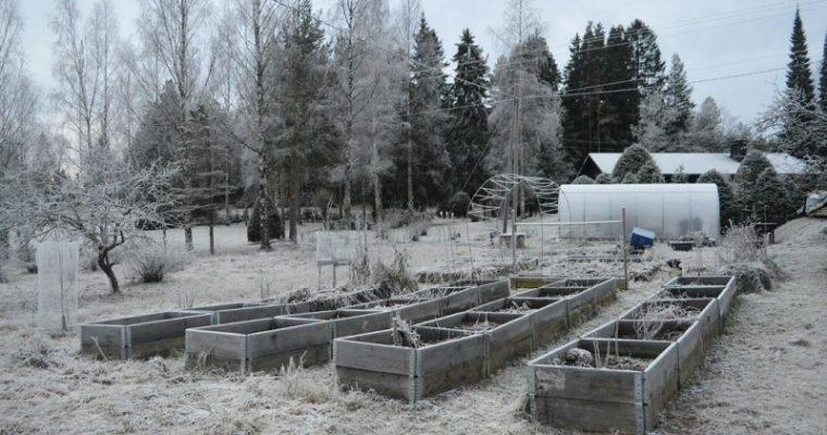 Heräilyä tulevaan puutarhavuoteen ja inspiroivat puutarhakirjat